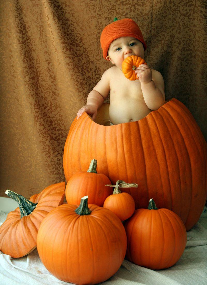 PumpkinFav1b