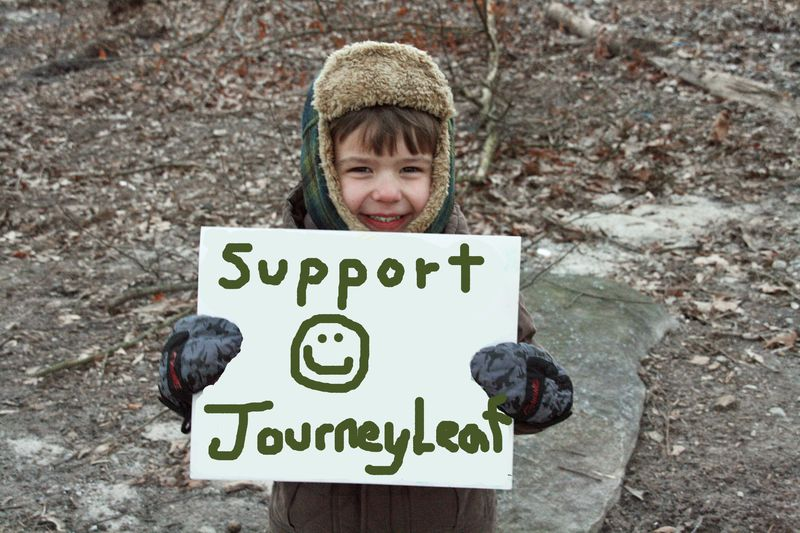 SupportJourneyLeaf