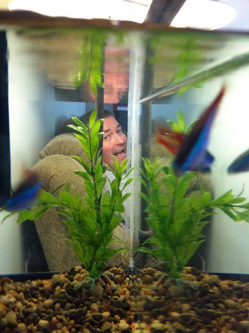FishPhotoBomb
