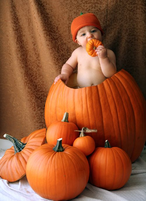 PumpkinFav1