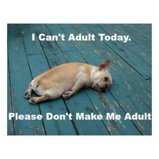 I-cant-adult-today