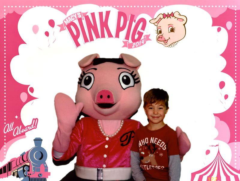 PinkPig002