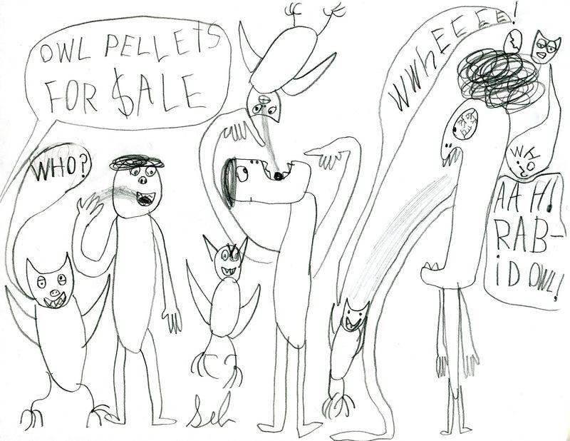 OwlPellets010